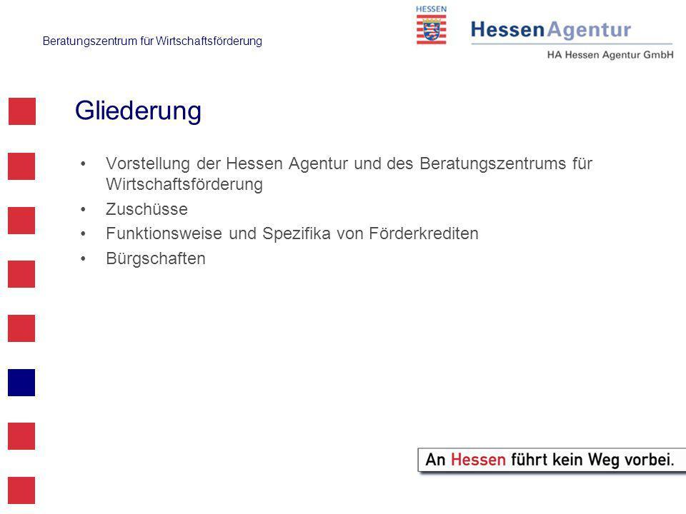 Beratungszentrum für Wirtschaftsförderung Gliederung Vorstellung der Hessen Agentur und des Beratungszentrums für Wirtschaftsförderung Zuschüsse Funktionsweise und Spezifika von Förderkrediten Bürgschaften