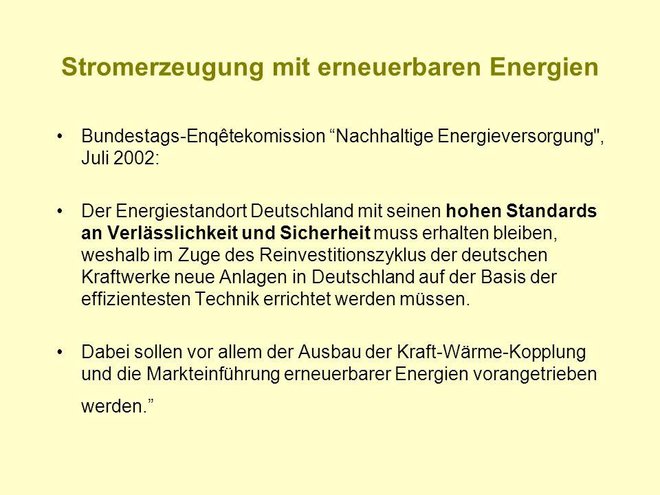 """Stromerzeugung mit erneuerbaren Energien Bundestags-Enqêtekomission """"Nachhaltige Energieversorgung"""