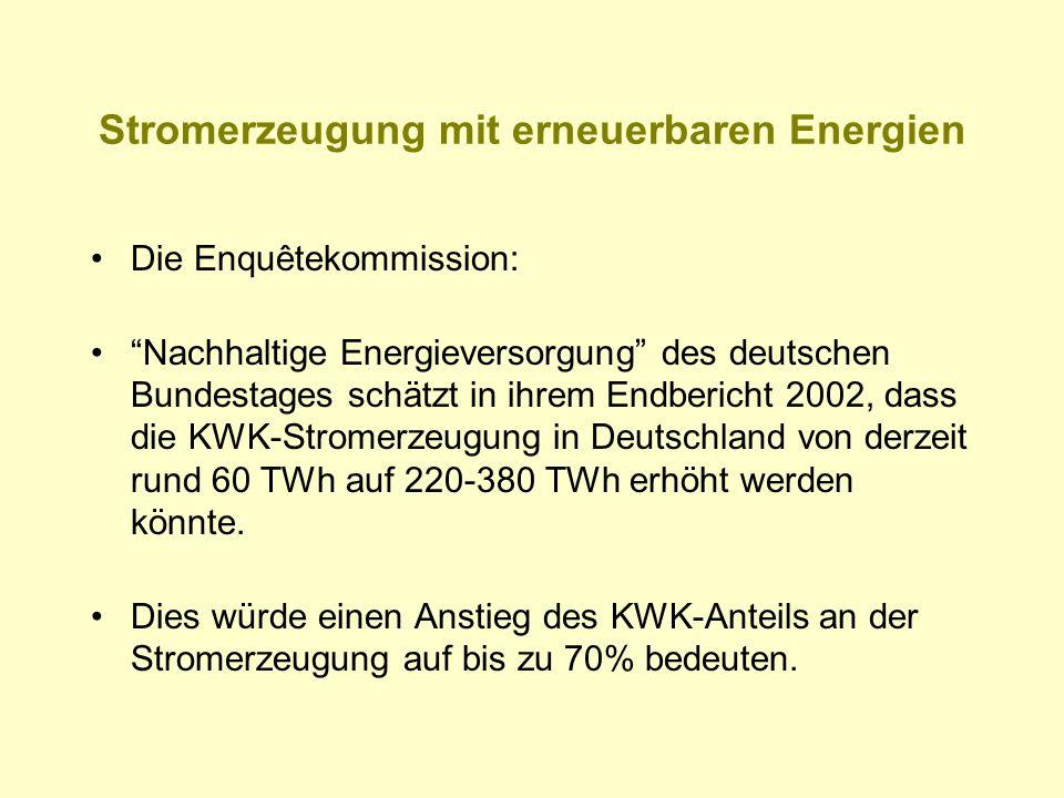 """Stromerzeugung mit erneuerbaren Energien Die Enquêtekommission: """"Nachhaltige Energieversorgung"""" des deutschen Bundestages schätzt in ihrem Endbericht"""