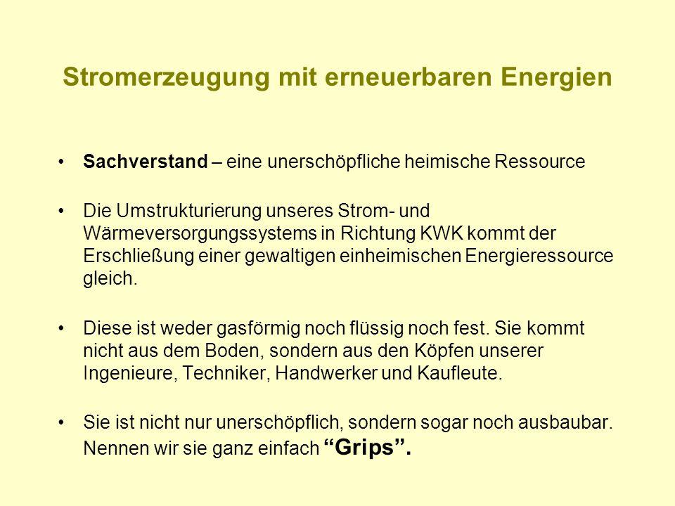 Stromerzeugung mit erneuerbaren Energien Sachverstand – eine unerschöpfliche heimische Ressource Die Umstrukturierung unseres Strom- und Wärmeversorgu