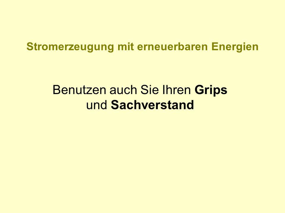 Stromerzeugung mit erneuerbaren Energien Benutzen auch Sie Ihren Grips und Sachverstand