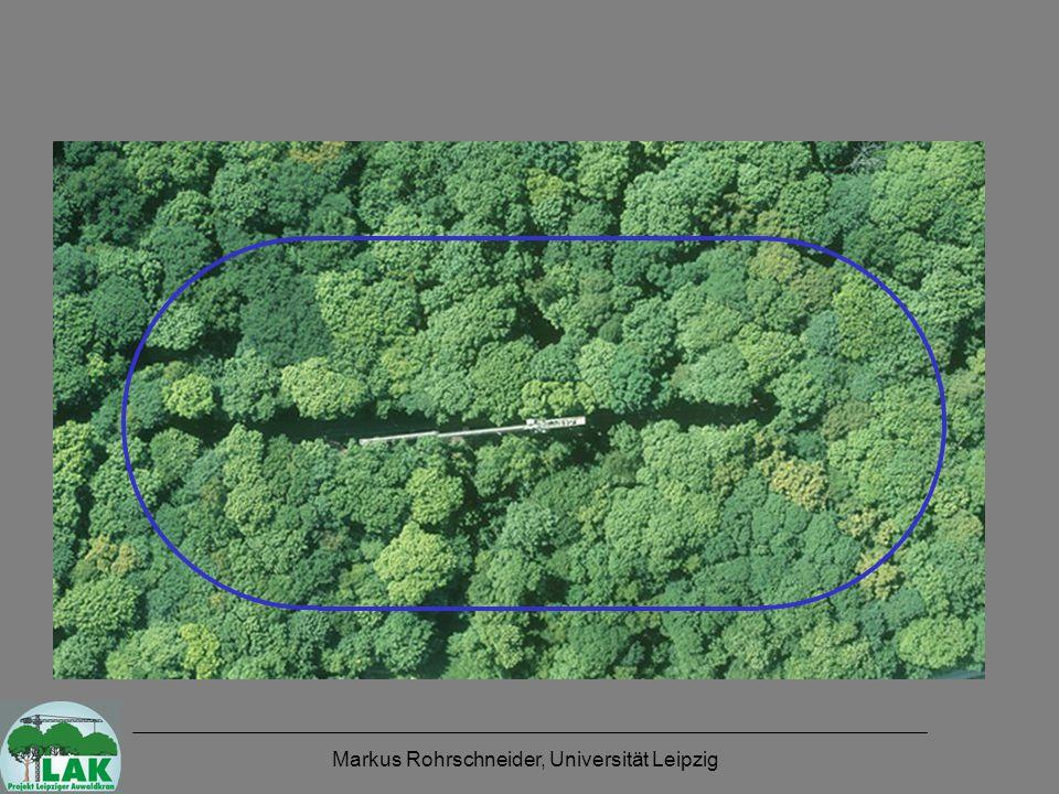 Markus Rohrschneider, Universität Leipzig Höhenverteilung - Kronenoberseite Gap-Anteil: bei h < 2 m 0,9 % (~35 m²) Gap-Anteil: bei h < 5 m 2,0 % (~78 m²) Gap-Anteil: bei h < 10 m 3,9 % (~156 m²)