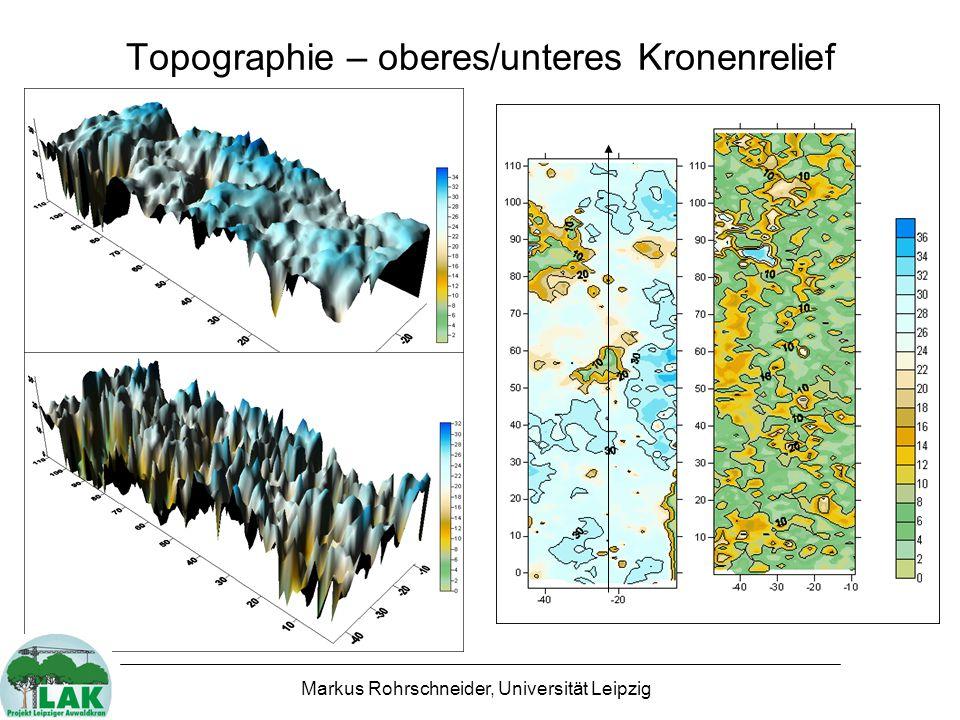 Kronenhöhe auf Transekt x = - 23 m 0 5 10 15 20 25 30 35