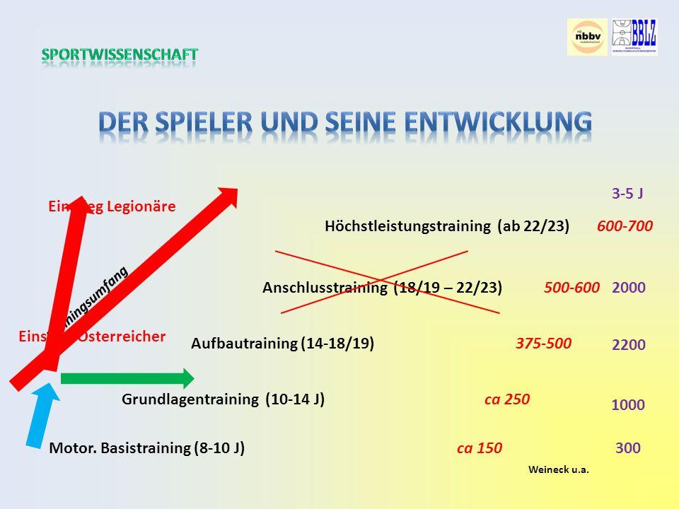 Grundlagentraining (10-14 J) Aufbautraining (14-18/19) Anschlusstraining (18/19 – 22/23) Motor.