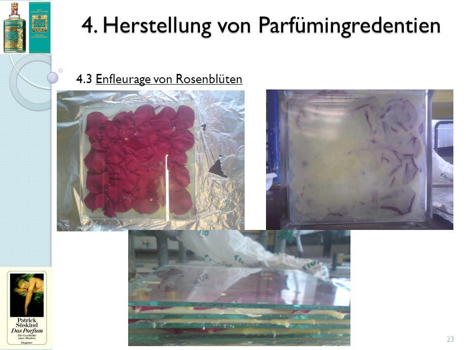 4. Herstellung von Parfümingredentien 23 4.3 Enfleurage von Rosenblüten