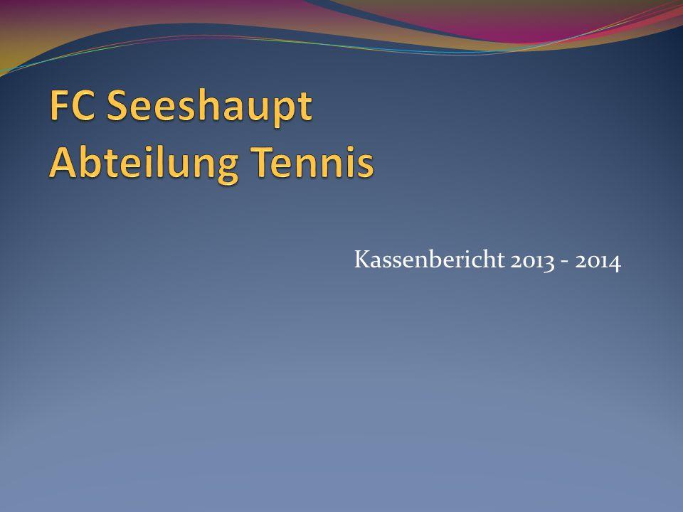 Kassenbericht 2013 - 2014