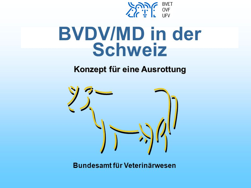 BVDV/MD in der Schweiz Konzept für eine Ausrottung Bundesamt für Veterinärwesen
