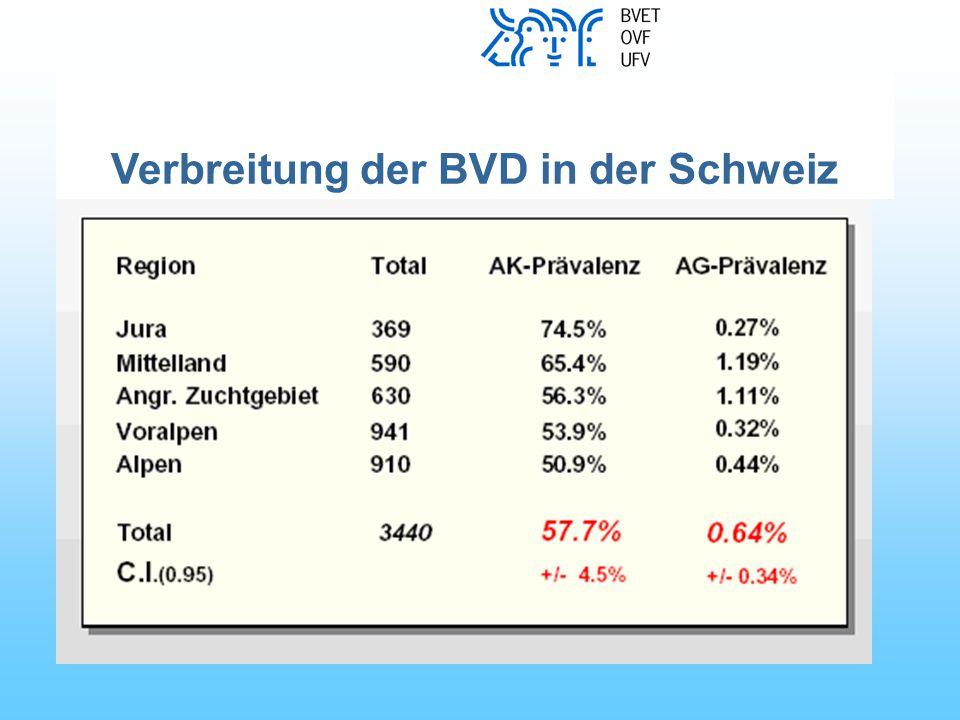 BVD: Wirtschaftliche Schäden Milchviehbestände Erkrankungen von Nicht-PI- Tieren in der Mastgruppe Tod (MD, andere Krankheiten) mangelnde Gewichtszunahme Mastbetriebe Umklassierung, Zuchtwert- verlust Tod (MD, andere Krankheiten) frühzeitiger Abgang mangelnde Gewichtszunahme Fruchtbarkeitsstörungen (Umrindern, Früh- und Spätaborte) Missbildungen PI-Tiere Nicht- PI-Tiere