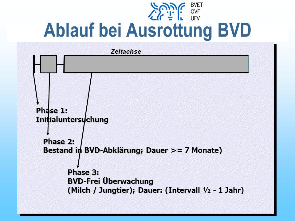 Ablauf bei Ausrottung BVD Phase 1: Initialuntersuchung Phase 2: Bestand in BVD-Abklärung; Dauer Bestand in BVD-Abklärung; Dauer >= 7 Monate) Phase 3: BVD-Frei Überwachung (Milch / Jungtier); Dauer: BVD-Frei Überwachung (Milch / Jungtier); Dauer: (Intervall ½ - 1 Jahr) Zeitachse