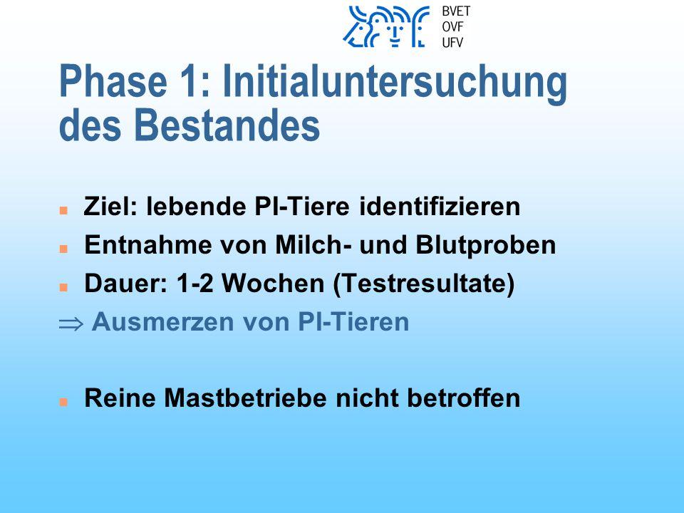 Phase 1: Initialuntersuchung des Bestandes n Ziel: lebende PI-Tiere identifizieren n Entnahme von Milch- und Blutproben n Dauer: 1-2 Wochen (Testresultate)  Ausmerzen von PI-Tieren n Reine Mastbetriebe nicht betroffen