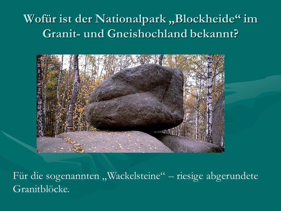 """Wofür ist der Nationalpark """"Blockheide"""" im Granit- und Gneishochland bekannt? Für die sogenannten """"Wackelsteine"""" – riesige abgerundete Granitblöcke."""