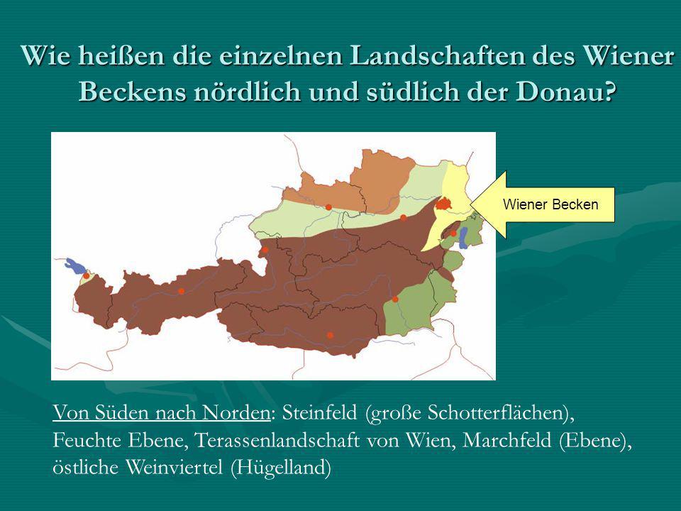 Wie heißen die einzelnen Landschaften des Wiener Beckens nördlich und südlich der Donau? Wiener Becken Von Süden nach Norden: Steinfeld (große Schotte