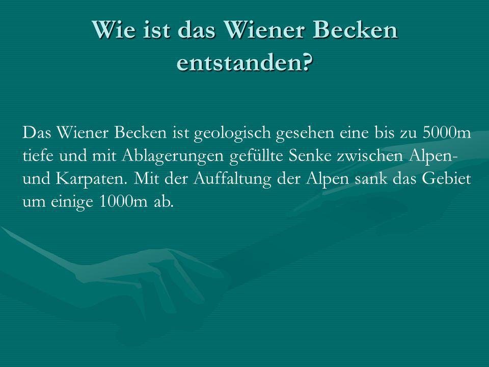 Wie ist das Wiener Becken entstanden? Das Wiener Becken ist geologisch gesehen eine bis zu 5000m tiefe und mit Ablagerungen gefüllte Senke zwischen Al