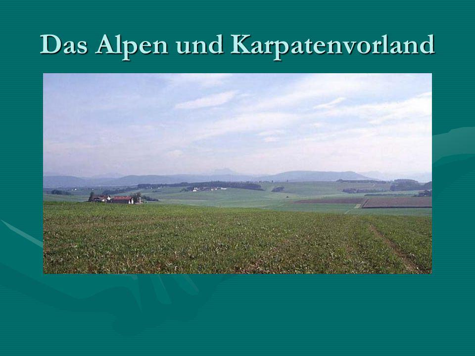 Von welchen Großlandschaften wird das Alpen- und Karpatenvorland im Norden und im Süden begrenzt.
