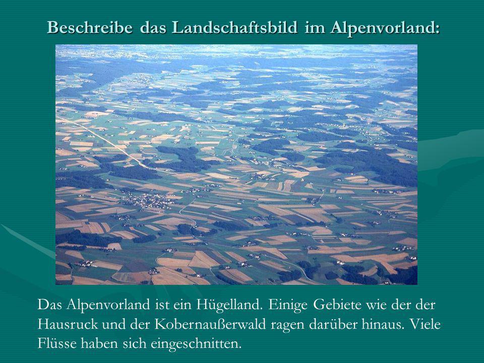 Beschreibe das Landschaftsbild im Alpenvorland: Das Alpenvorland ist ein Hügelland. Einige Gebiete wie der der Hausruck und der Kobernaußerwald ragen