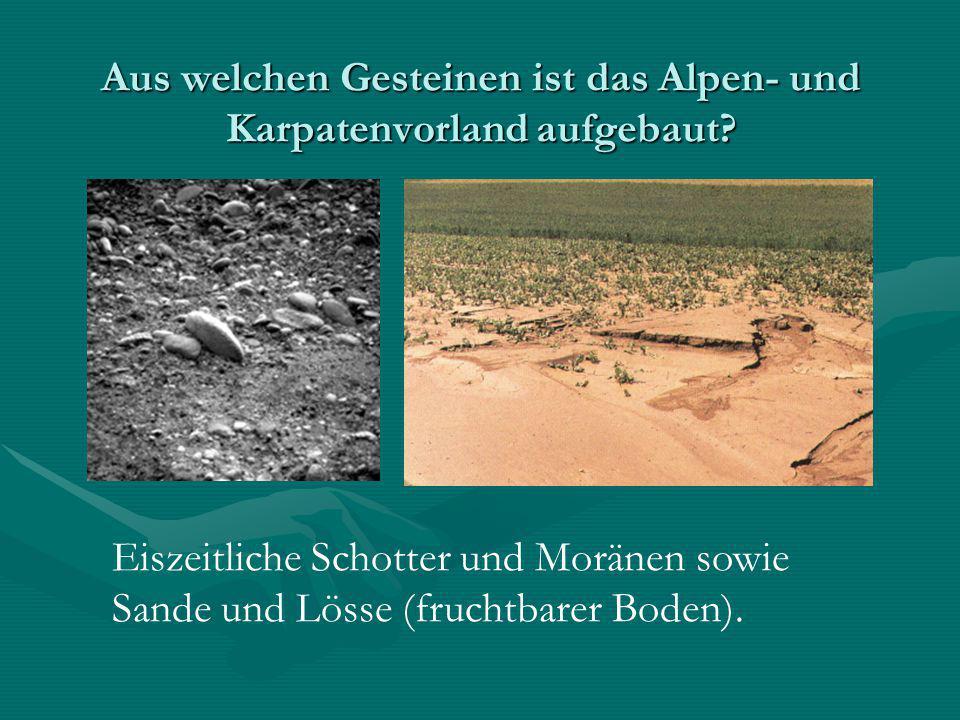 Aus welchen Gesteinen ist das Alpen- und Karpatenvorland aufgebaut? Eiszeitliche Schotter und Moränen sowie Sande und Lösse (fruchtbarer Boden).