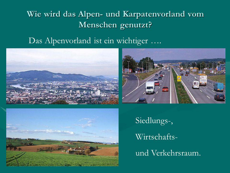 Wie wird das Alpen- und Karpatenvorland vom Menschen genutzt? Das Alpenvorland ist ein wichtiger …. Siedlungs-, Wirtschafts- und Verkehrsraum.