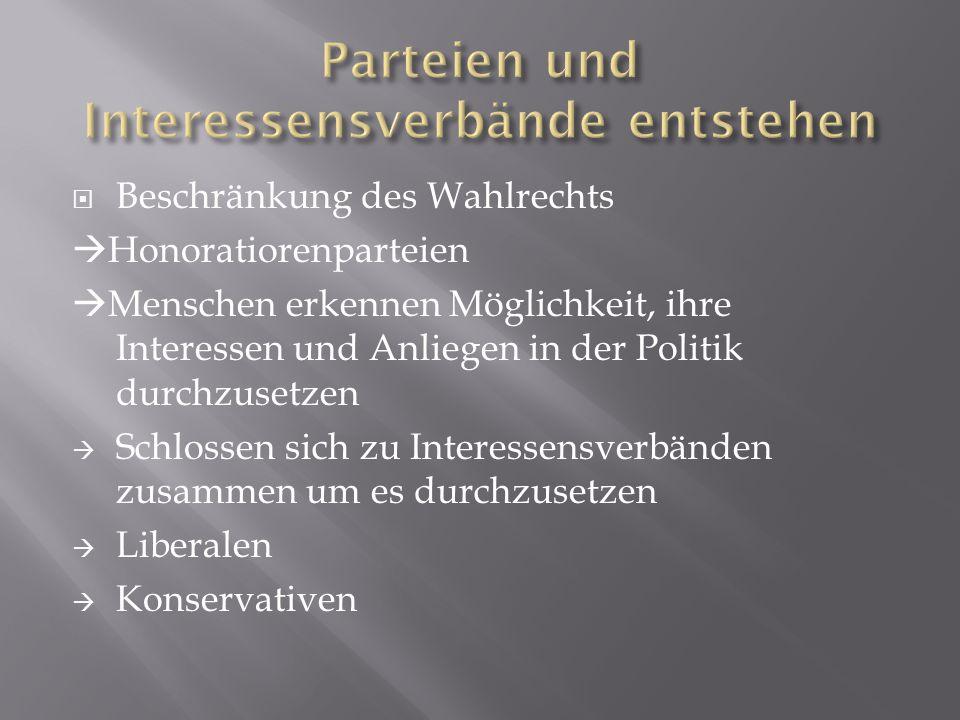  Schrittweise entstanden Massenparteien  entwickelten feste Organisationen  Parteien, die bis heute in gewisser Form noch bestehen: Christlich soziale Partei Sozialdemokratische Partei Deutschnationale Lager (heutige FPÖ)