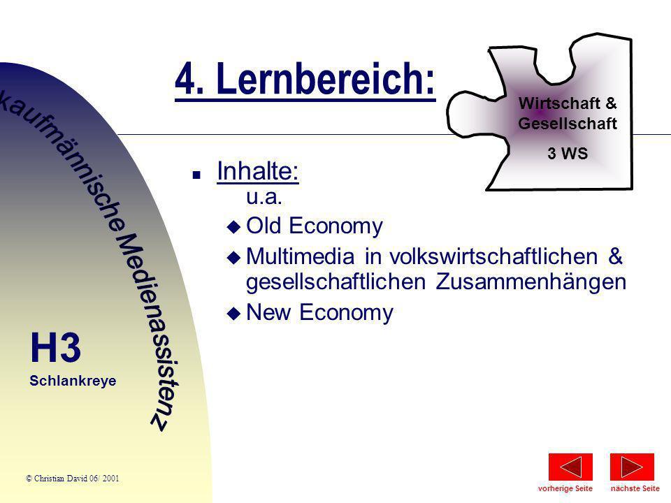 4. Lernbereich: Wirtschaft & Gesellschaft 3 WS n Inhalte: u.a. u Old Economy u Multimedia in volkswirtschaftlichen & gesellschaftlichen Zusammenhängen