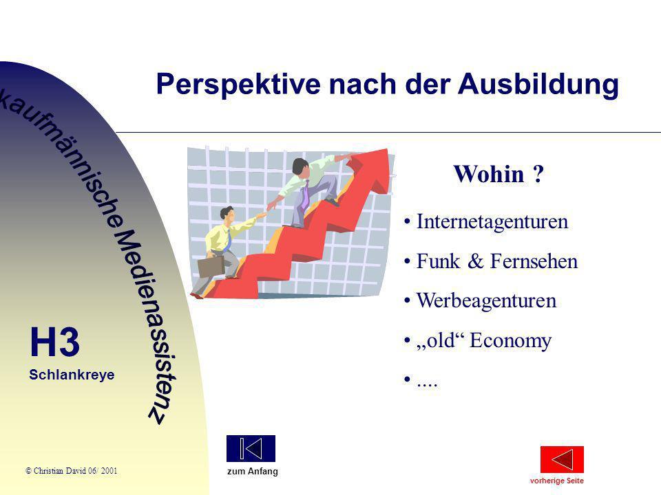 """Wohin ? Internetagenturen Funk & Fernsehen Werbeagenturen """"old"""" Economy.... Perspektive nach der Ausbildung H3 Schlankreye © Christian David 06/ 2001"""
