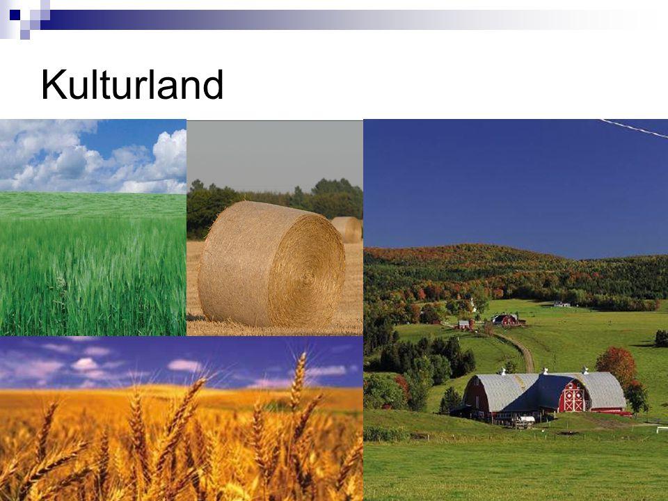 Kulturland