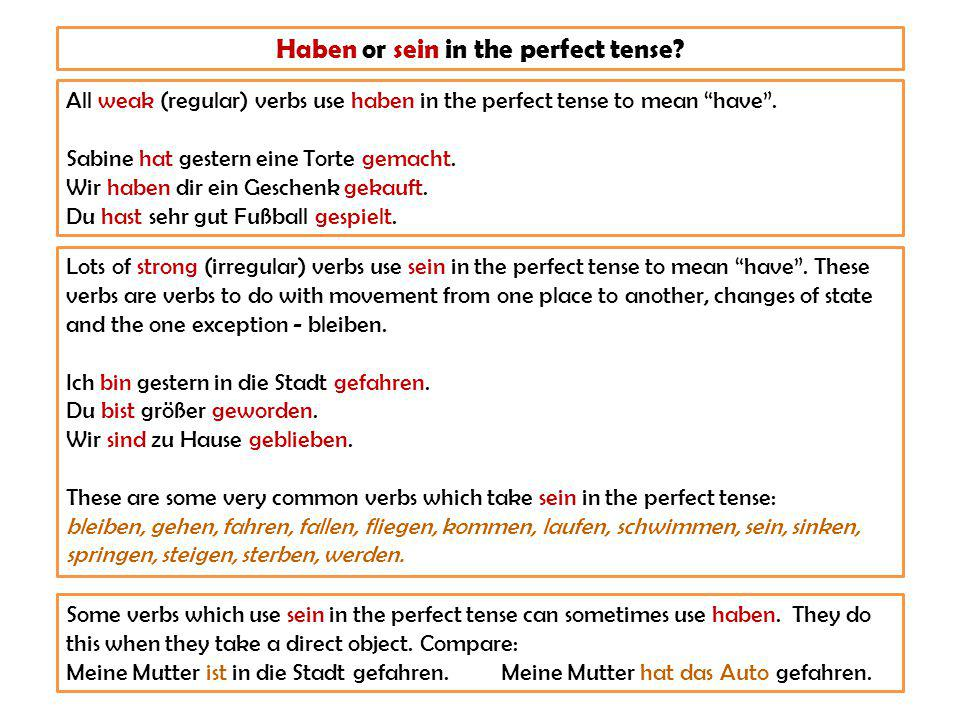Check your understanding.Complete the sentences with the correct form of sein or haben.