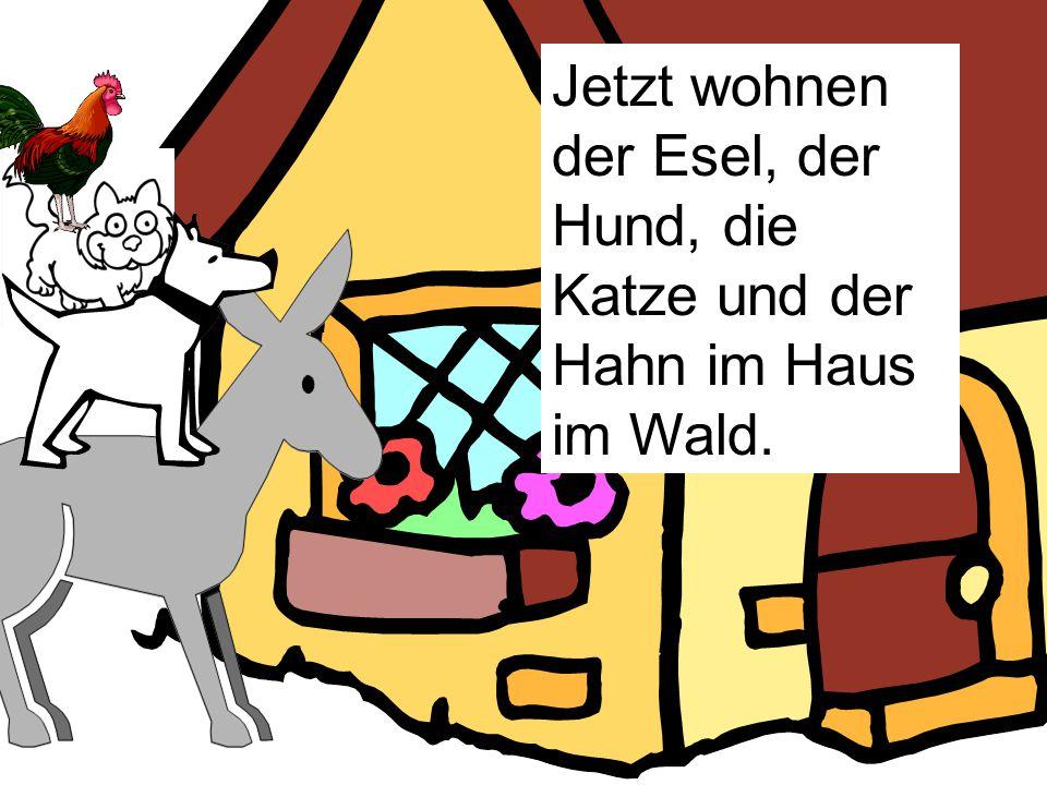 Jetzt wohnen der Esel, der Hund, die Katze und der Hahn im Haus im Wald.