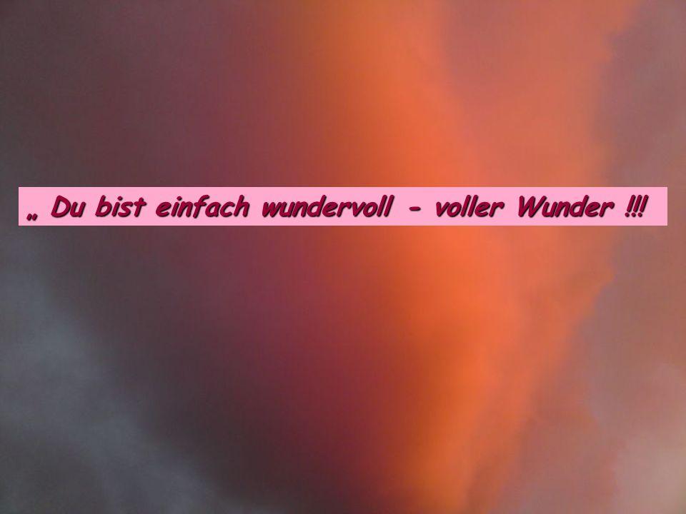 """ Du bist einfach wundervoll - voller Wunder !!!"