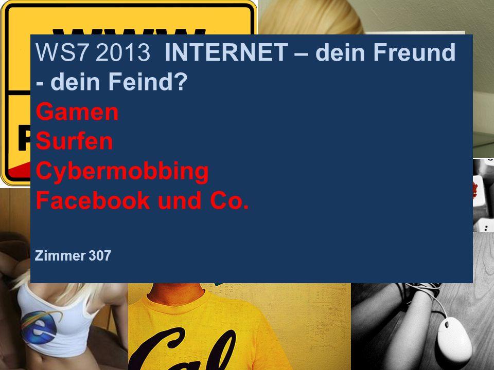 WS7 2013 INTERNET – dein Freund - dein Feind? Gamen Surfen Cybermobbing Facebook und Co. Zimmer 307