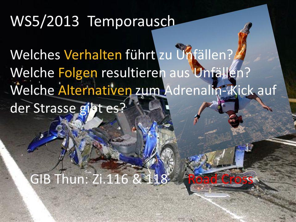 WS5/2013 Temporausch Welches Verhalten führt zu Unfällen? Welche Folgen resultieren aus Unfällen? Welche Alternativen zum Adrenalin- Kick auf der Stra