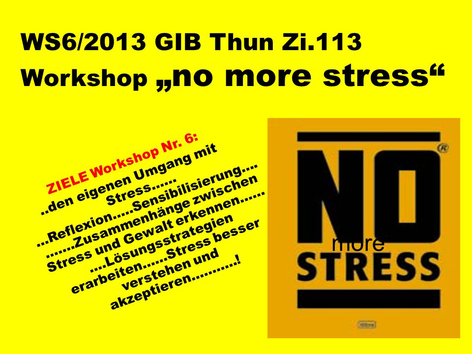 "WS6/2013 GIB Thun Zi.113 Workshop ""no more stress ZIELE Workshop Nr."