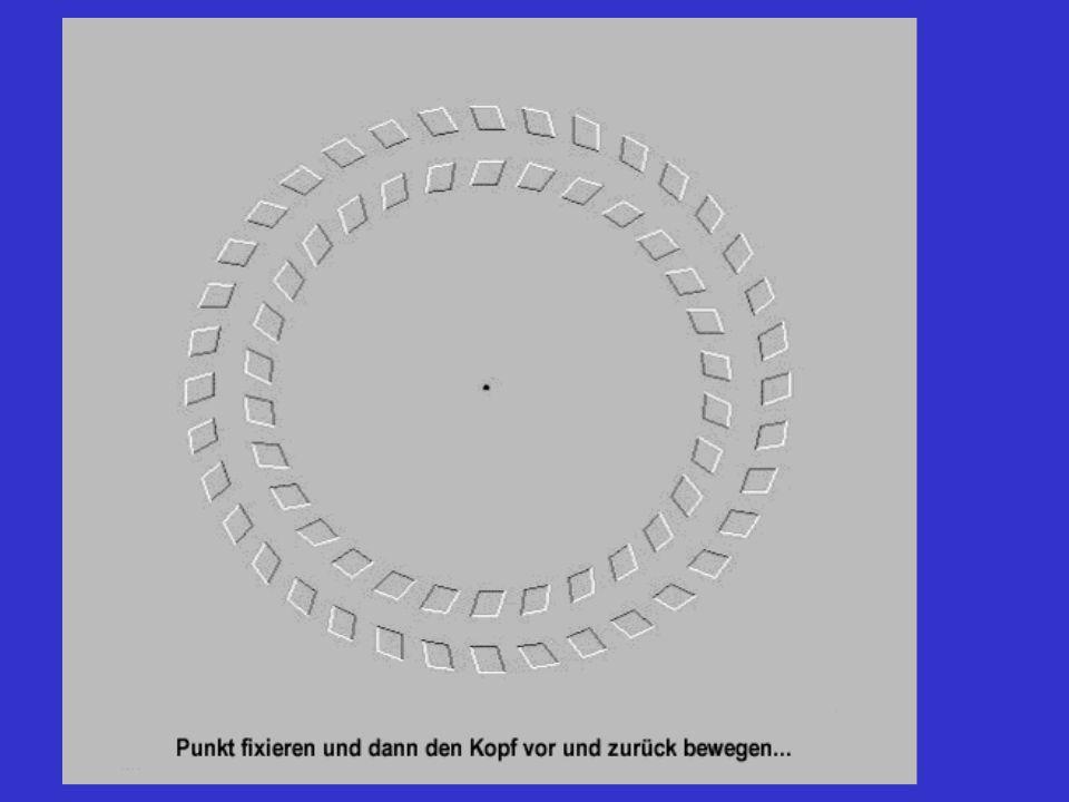 Fixiere den Punkt in der Mitte und bewege deinen Kopf vor-und rückwärts......