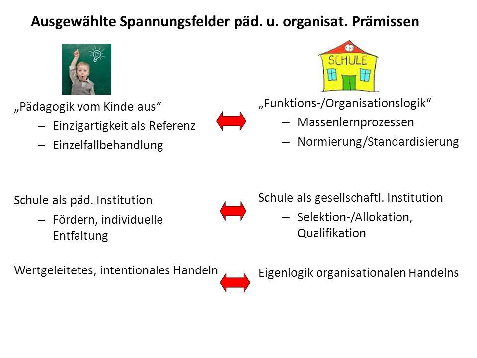 Ausgewählte Spannungsfelder päd.u. organisat.