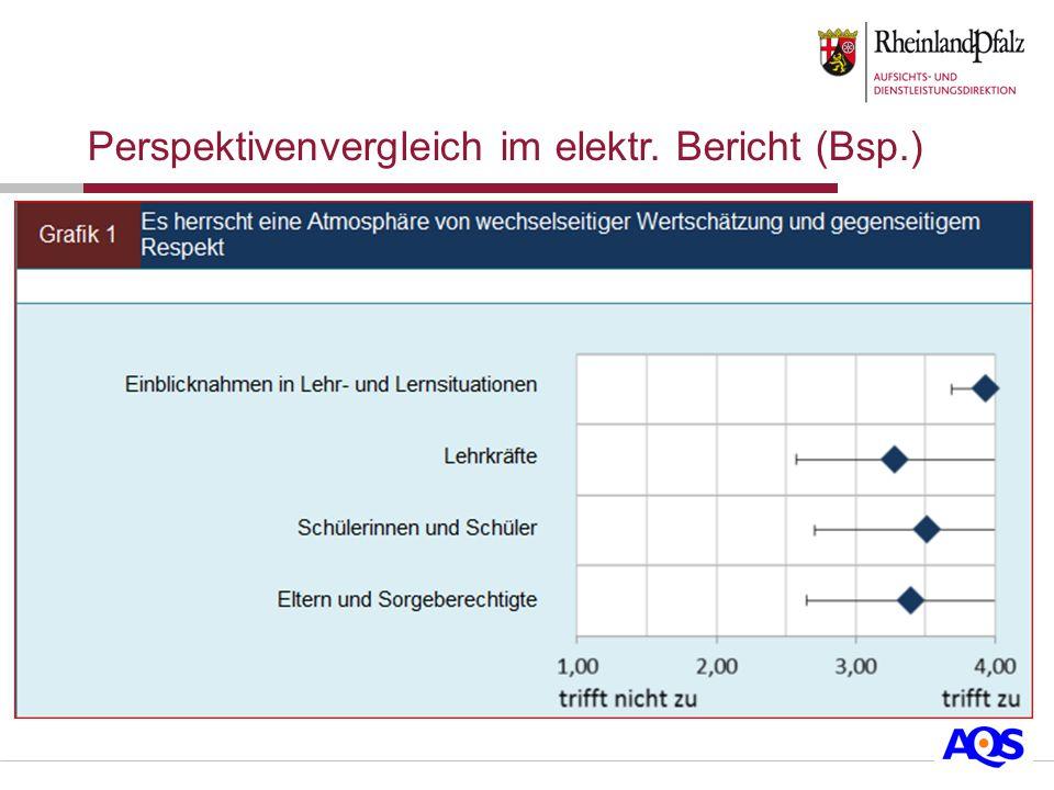 Perspektivenvergleich im elektr. Bericht (Bsp.)