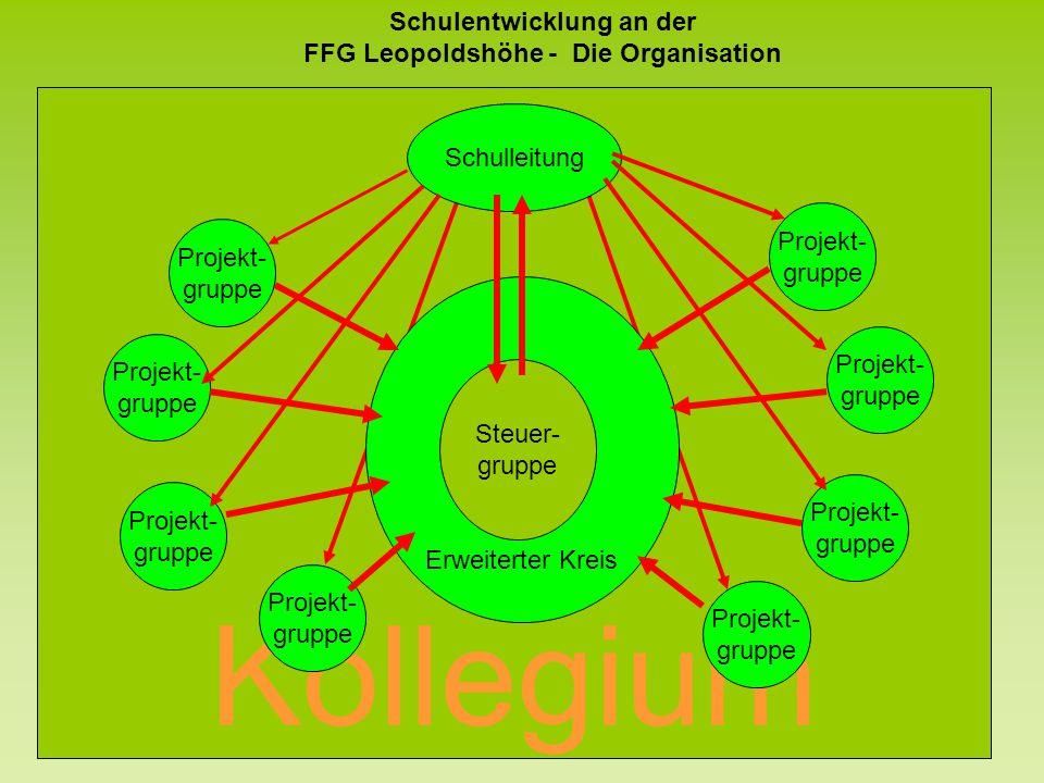 Kollegium Erweiterter Kreis Schulentwicklung an der FFG Leopoldshöhe - Die Organisation Projekt- gruppe Projekt- gruppe Projekt- gruppe Projekt- grupp