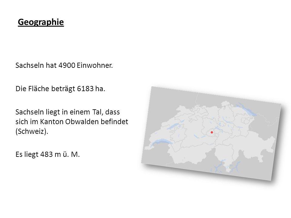 Geographie Sachseln hat 4900 Einwohner. Die Fläche beträgt 6183 ha.