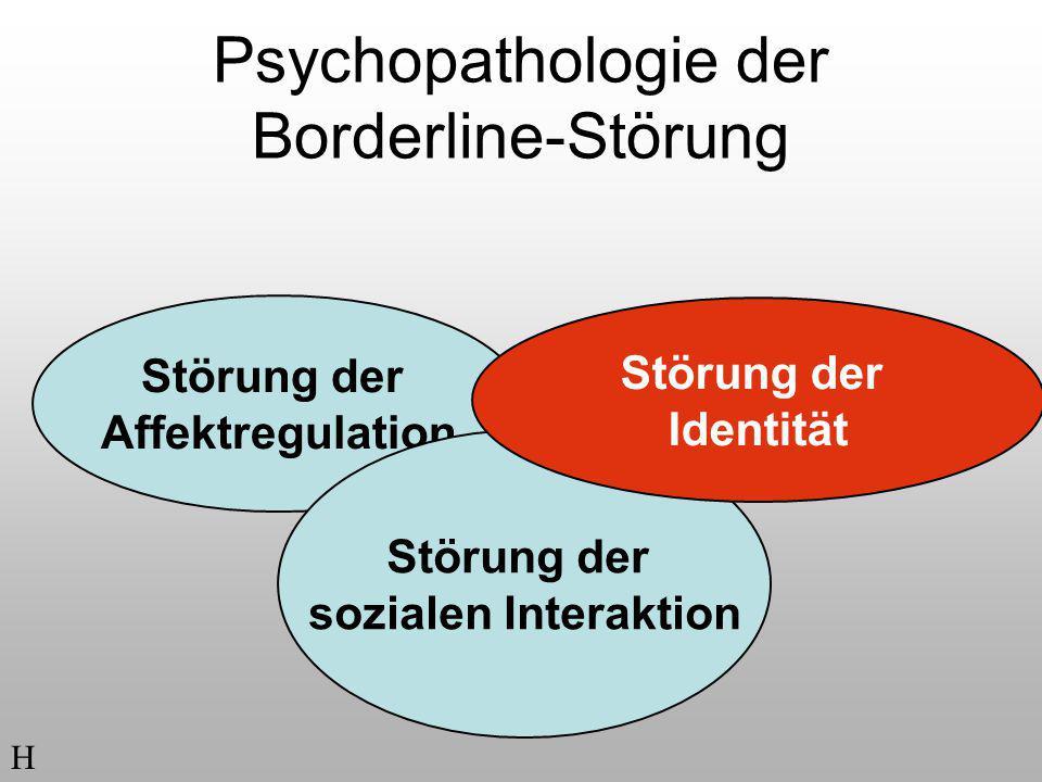 Psychopathologie der Borderline-Störung Störung der Affektregulation Störung der sozialen Interaktion H Störung der Identität