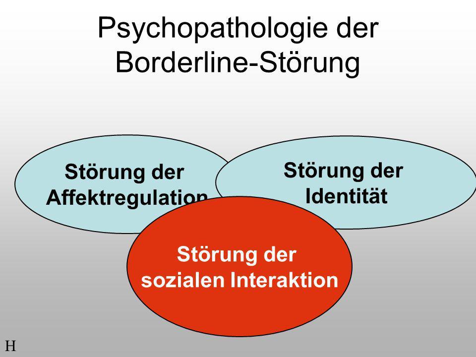 Psychopathologie der Borderline-Störung Störung der Affektregulation Störung der Identität Störung der sozialen Interaktion H