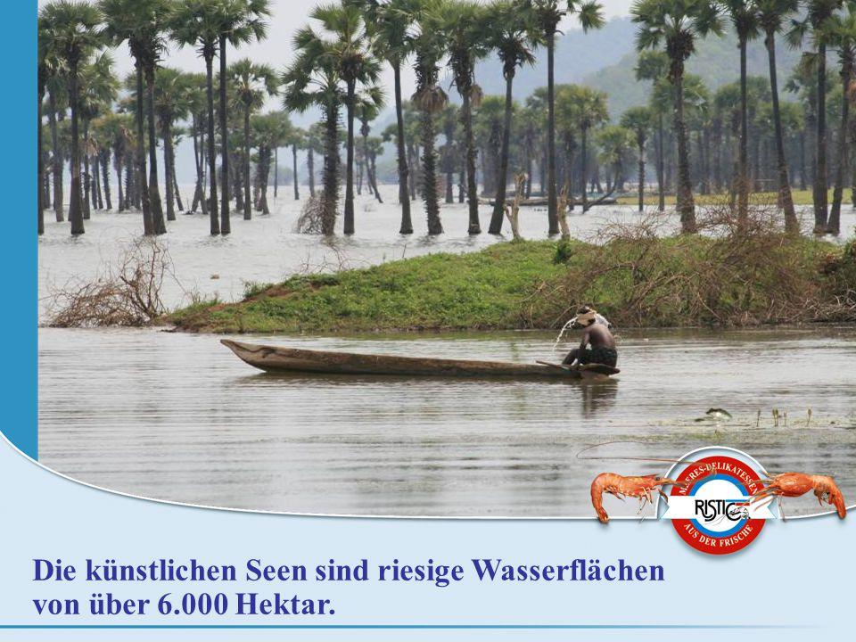 Die künstlichen Seen sind riesige Wasserflächen von über 6.000 Hektar.