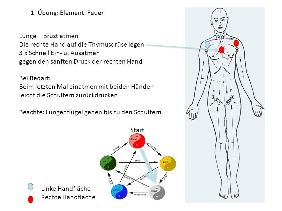Linke Handfläche Rechte Handfläche Lunge – Brust atmen Die rechte Hand auf die Thymusdrüse legen 3 x Schnell Ein- u.