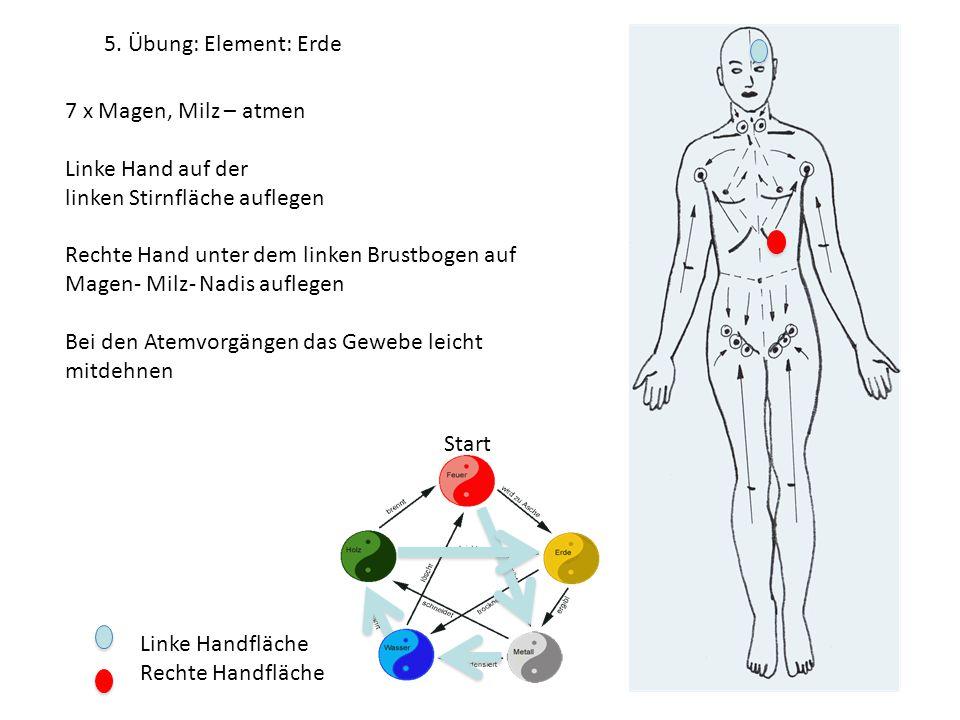 Linke Handfläche Rechte Handfläche 7 x Magen, Milz – atmen Linke Hand auf der linken Stirnfläche auflegen Rechte Hand unter dem linken Brustbogen auf Magen- Milz- Nadis auflegen Bei den Atemvorgängen das Gewebe leicht mitdehnen 5.
