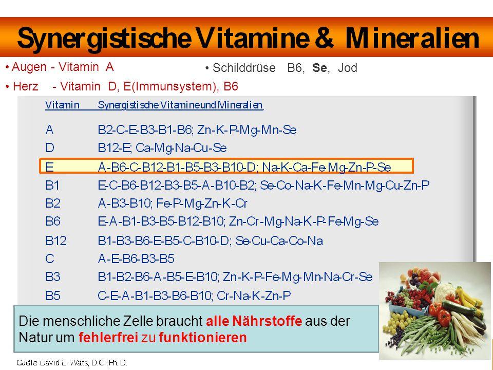 www.vemma-pur.com © by Peter Winkler Augen - Vitamin A Herz - Vitamin D, E(Immunsystem), B6 Schilddrüse B6, Se, Jod Die menschliche Zelle braucht alle Nährstoffe aus der Natur um fehlerfrei zu funktionieren