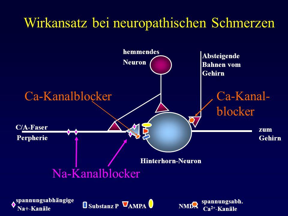 spannungsabhängige Na+-Kanäle Wirkansatz bei neuropathischen Schmerzen zum Gehirn Hinterhorn-Neuron C/A-Faser Perpherie Absteigende Bahnen vom Gehirn
