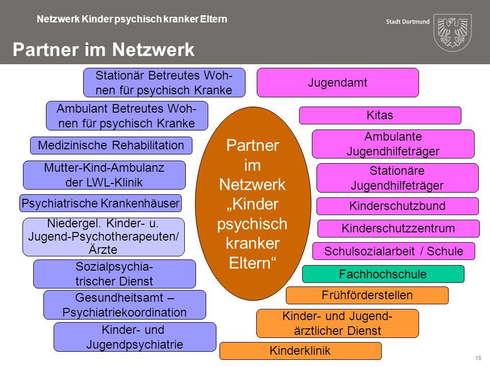 16 Netzwerk Kinder psychisch kranker Eltern Partner im Netzwerk Ambulant Betreutes Woh- nen für psychisch Kranke Psychiatrische Krankenhäuser Medizini