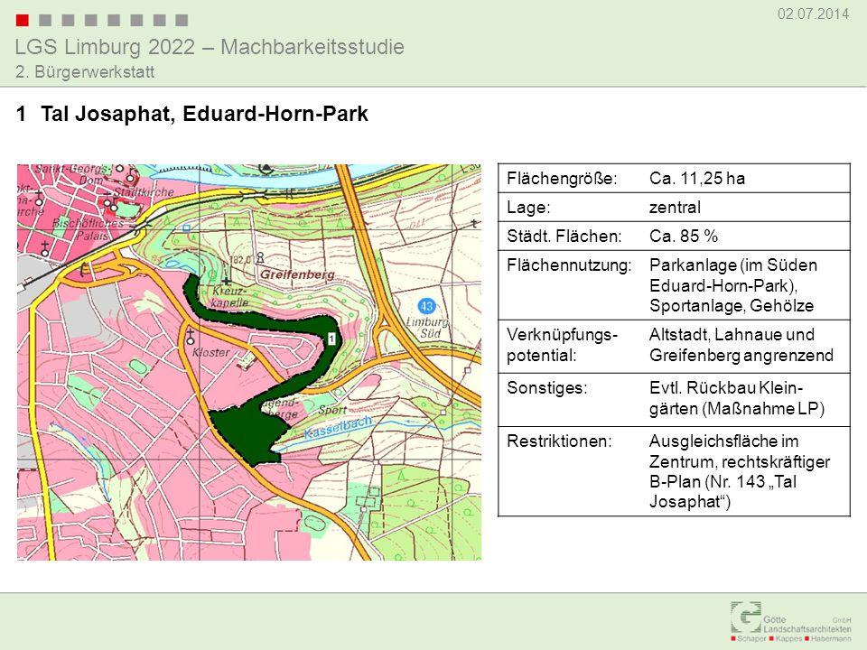 LGS Limburg 2022 – Machbarkeitsstudie 02.07.2014 2. Bürgerwerkstatt 1 Tal Josaphat, Eduard-Horn-Park Flächengröße:Ca. 11,25 ha Lage:zentral Städt. Flä