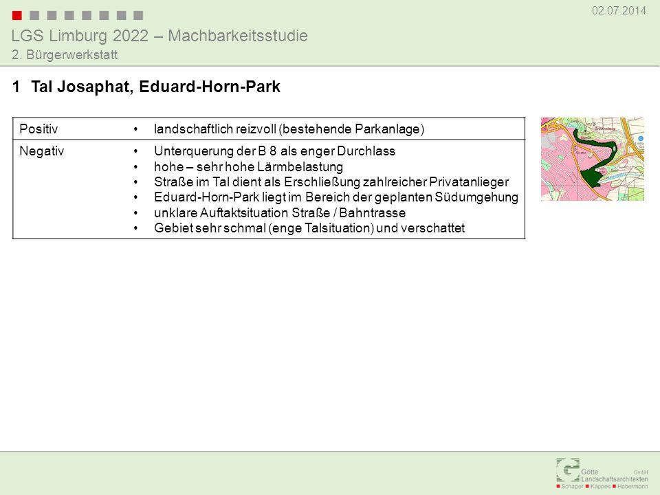 LGS Limburg 2022 – Machbarkeitsstudie 02.07.2014 2. Bürgerwerkstatt Positivlandschaftlich reizvoll (bestehende Parkanlage) NegativUnterquerung der B 8