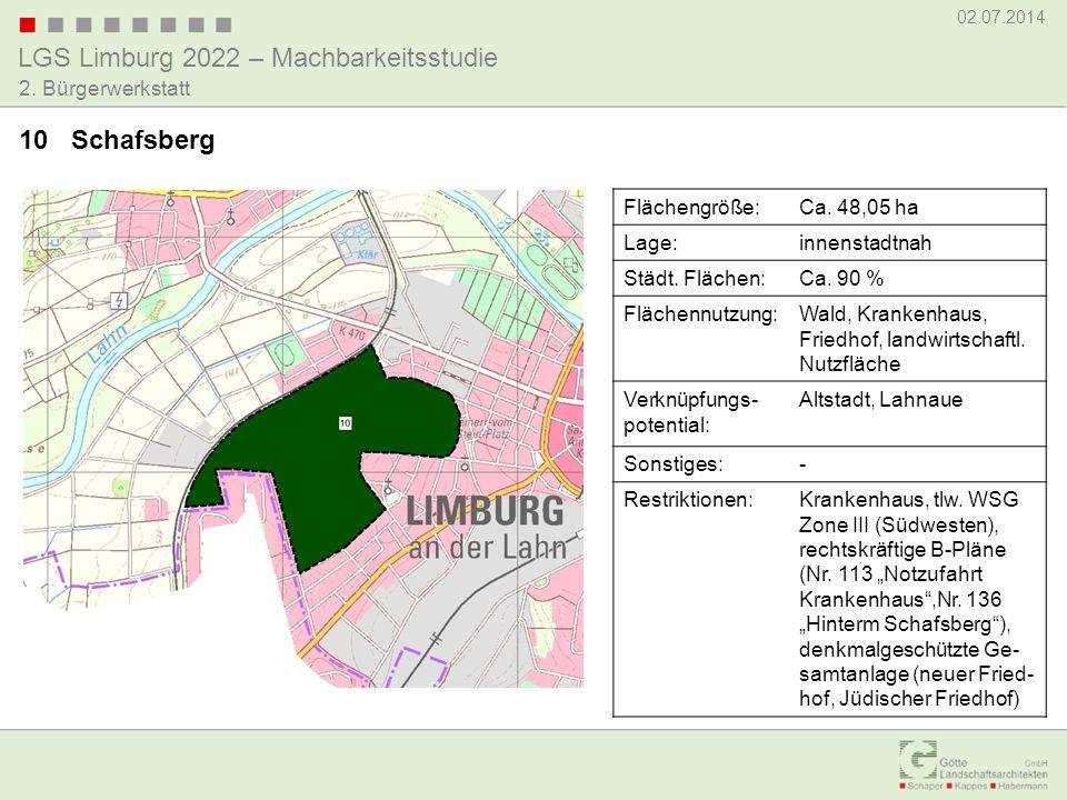 LGS Limburg 2022 – Machbarkeitsstudie 02.07.2014 2. Bürgerwerkstatt 10 Schafsberg Flächengröße:Ca. 48,05 ha Lage:innenstadtnah Städt. Flächen:Ca. 90 %