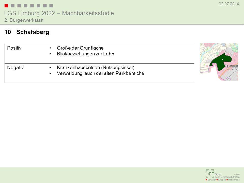 LGS Limburg 2022 – Machbarkeitsstudie 02.07.2014 2. Bürgerwerkstatt PositivGröße der Grünfläche Blickbeziehungen zur Lahn NegativKrankenhausbetrieb (N