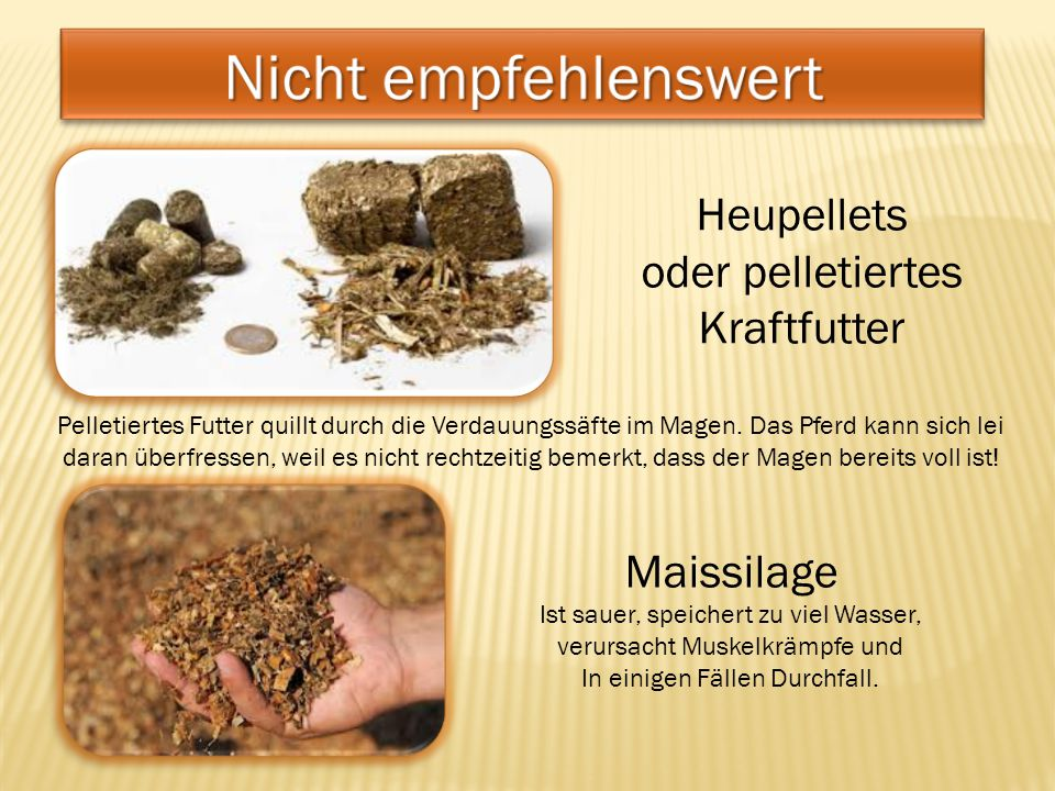 Heupellets oder pelletiertes Kraftfutter Pelletiertes Futter quillt durch die Verdauungssäfte im Magen. Das Pferd kann sich lei daran überfressen, wei