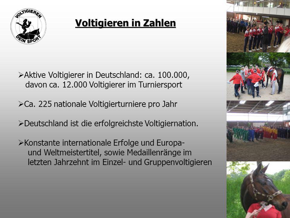 Voltigieren in Zahlen  Aktive Voltigierer in Deutschland: ca. 100.000, davon ca. 12.000 Voltigierer im Turniersport  Ca. 225 nationale Voltigierturn
